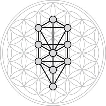 Blume des Lebens Baum des Lebens Kabbala