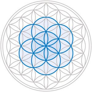 Die Blume des Lebens Bedeutung